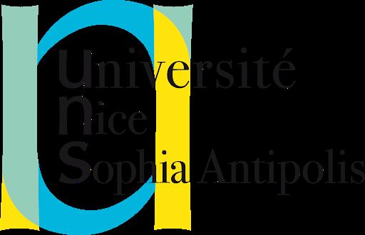 Développeur web DUT Informatique